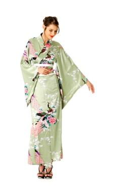 Grön Kimono Klänning Kimono Klänningar